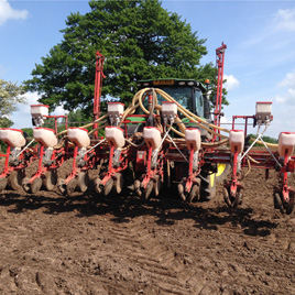 Maize drill1